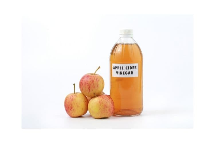 Apple Cider Vinegar Conditioner for dry hair